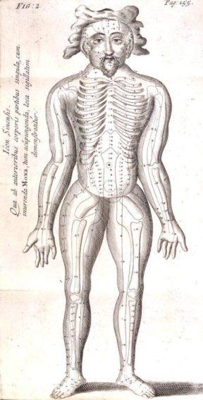 RHYNE, Willem ten (1647-1700). Dissertatio de arthritide: Mantissa schematica: De acupunctura: et orationes tres, I. De chymiae ac botaniae antiquitate & dignitate: II. De physiognomia: III. De monstris. London: R. Chiswell, 1683. [SGC RBK R.91]